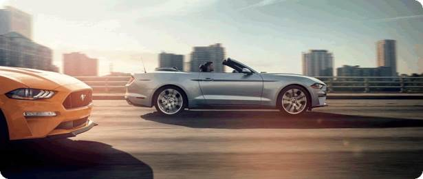 Convertible - Ford Mustang